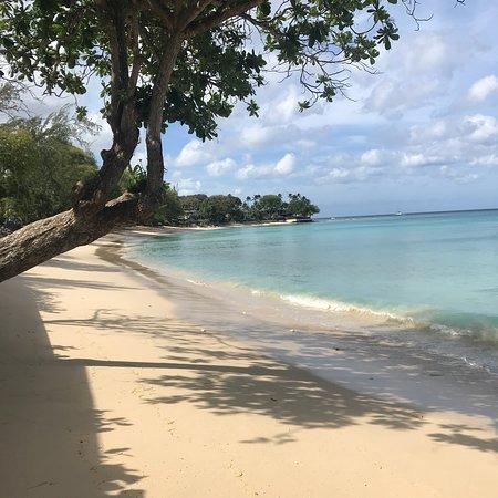 Lower Carlton, Barbados: photo0.jpg
