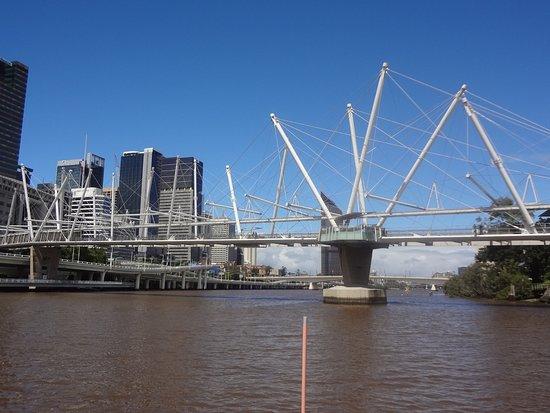 City Cat: Unusual bridge over Brisbane river