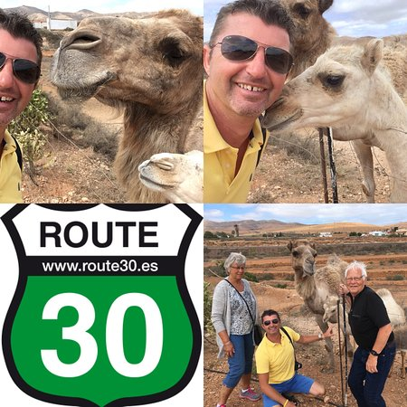 Route 30 Excursions : Book your Panorama Island Tours in Fuerteventura at route30.es .