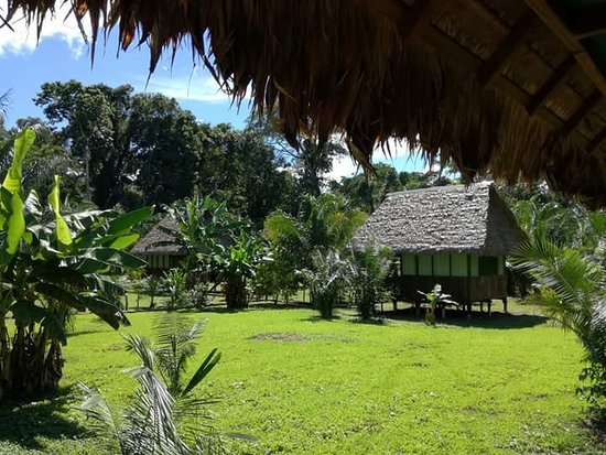 Peru Amazon Garden Lodge - Jungle Tambopata Daily Activities