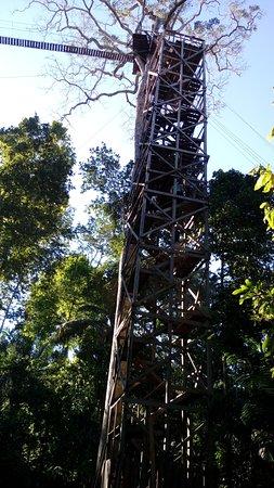 Peru Amazon Garden Lodge - Jungle Tambopata Daily Activities : Peru Amazon Garden Tours