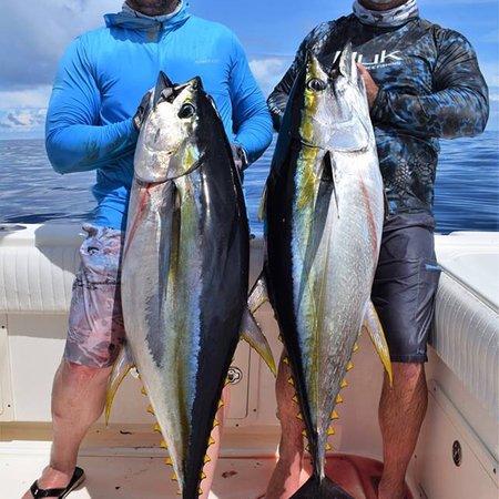 Golfo de Chiriqui National Park, Panama: photo2.jpg