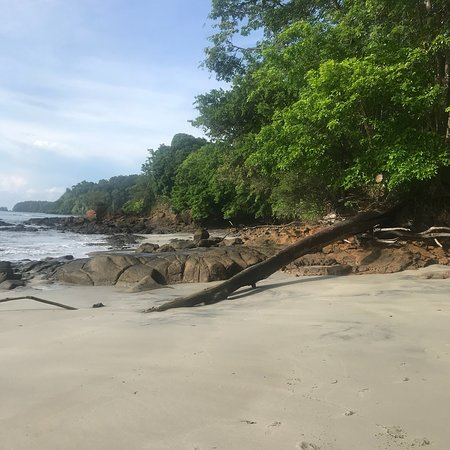 Golfo de Chiriqui National Park, Panama: photo3.jpg