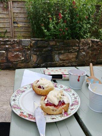 Penbryn, UK: Cream tea