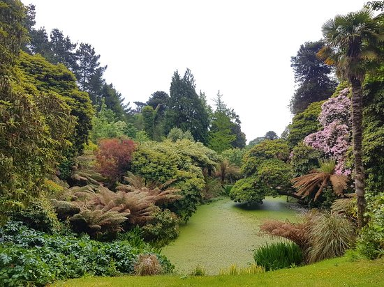 The Lost Gardens of Heligan: 20180526_134227_large.jpg