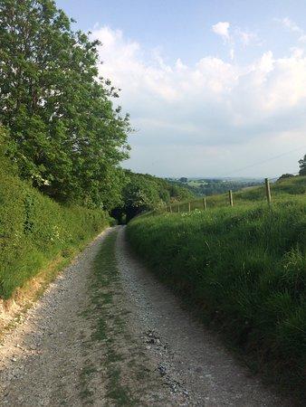 Plush, UK: Nearby walk