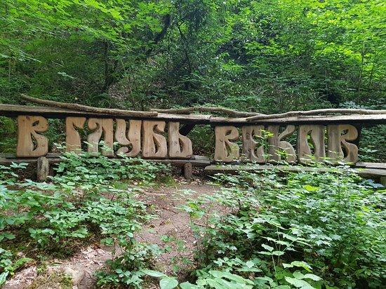 Khostinsky Tisosamshitovaya Grove ภาพถ่าย