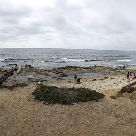 La Jolla Cove ภาพถ่าย