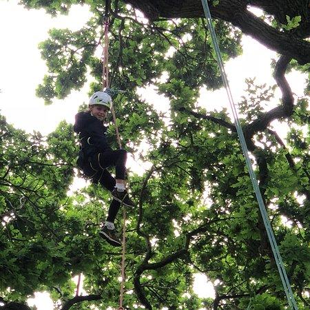 Goodleaf Tree Climbing ภาพถ่าย