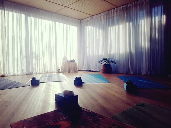 Our Yoga Kāpiti classes include comfortable bolsters and lavender-scented eye pillows! 🕉