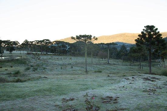 Refugio Xaxim: área externa da pousada
