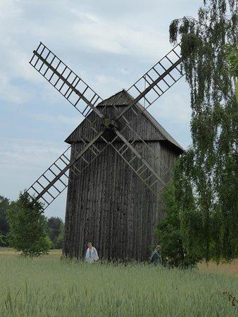Maurzyce, Polen: Windmill