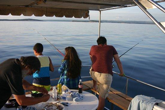 Flipper: Fishing
