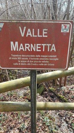 Bilde fra Castiglione Olona