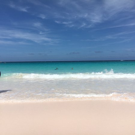 Pink Sands Beach照片