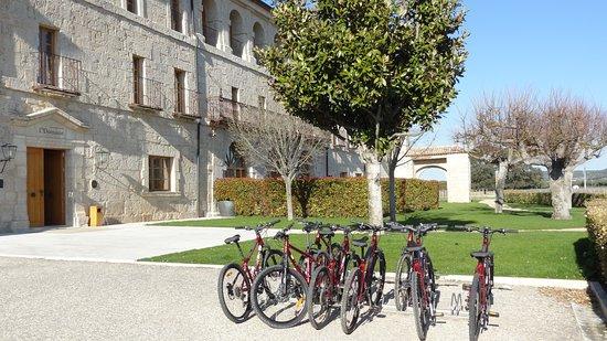 Hotel Abadia Retuerta Le Domaine: Los más deportistas pueden visitar sus Pagos con dos ruedas y pic-nic.