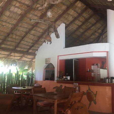 Hotel La Tortuga Foto
