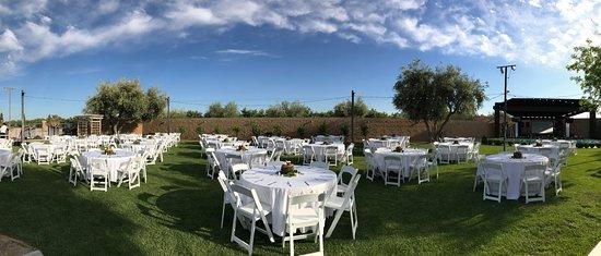 San Joaquin Winery : lawn