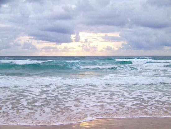 Seashell Suites Resort: Early Morning Beach Shot