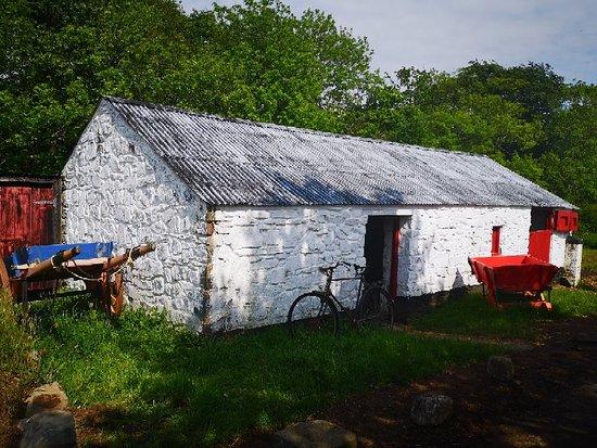 Ulster Folk Museum: Folk museum