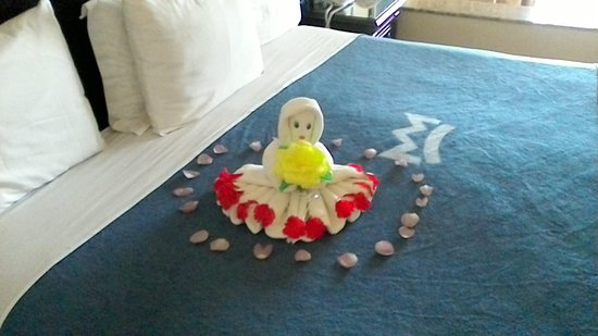 Hotel Riu Palace Riviera Maya: Towel art daily