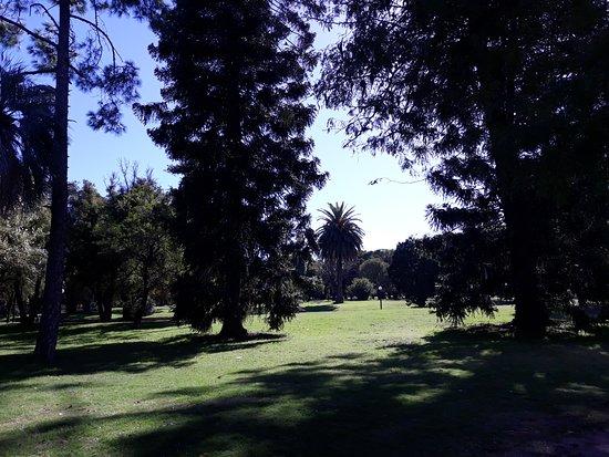 Parque Batlle照片