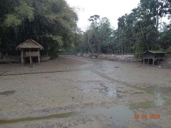 Infinity Resorts Kaziranga: Dried up lake