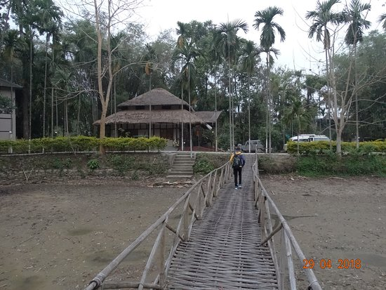 Infinity Resorts Kaziranga: Nice place after May as water will get filled due to Rain..