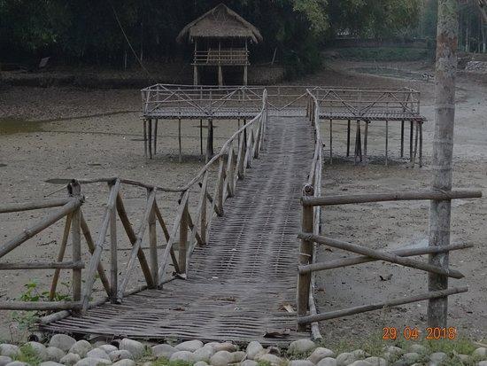 Infinity Resorts Kaziranga ภาพถ่าย