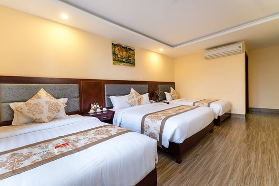 Nhat Minh Hotel and Apartment : Deluxe Triple Room