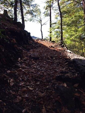 Araucania Region, Chile: Lovely hiking trail