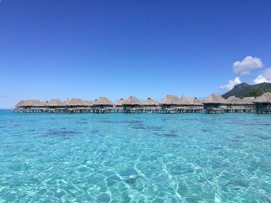 Sofitel Moorea Ia Ora Beach Resort: Ia Ora Beach lagoon and over the water Chalets