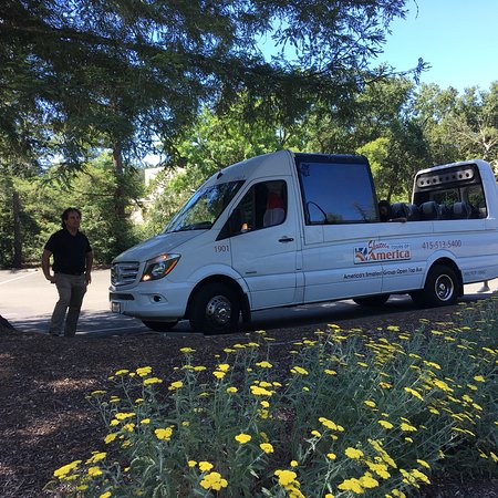Napa Tour Shuttle : We chose this tour for my boyfriend's 60th birthday. It was great!