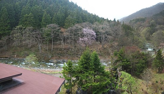 Minakamisanso: Вид из окна в холле