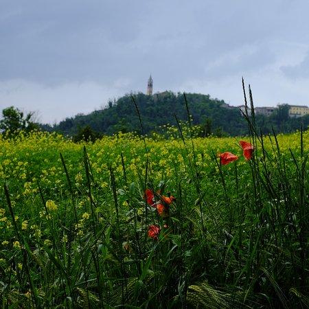 La Piazzetta : Panorama e dettaglio