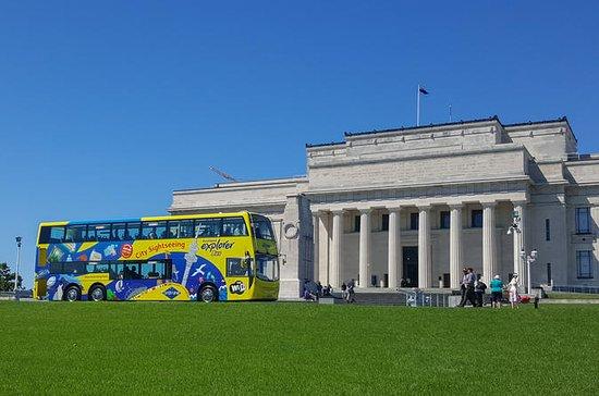 Landausflug in Auckland...
