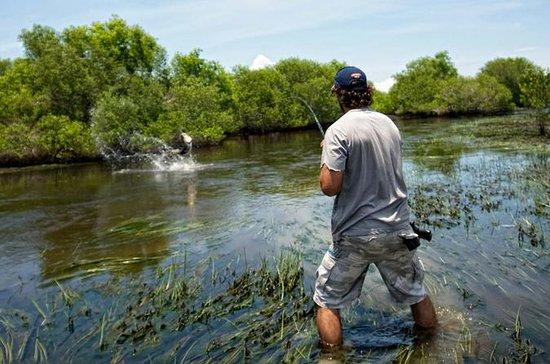 Experiencia de pesca de un día en el...