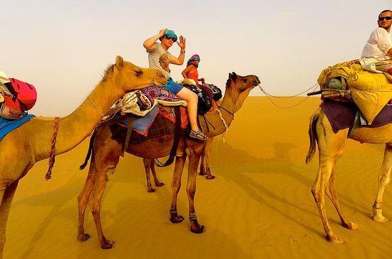 Private Excursion: Half Day Safari...