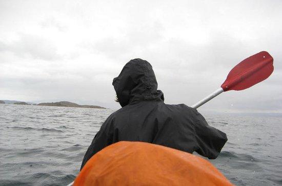 Tour privado de 2 días en kayak en el...