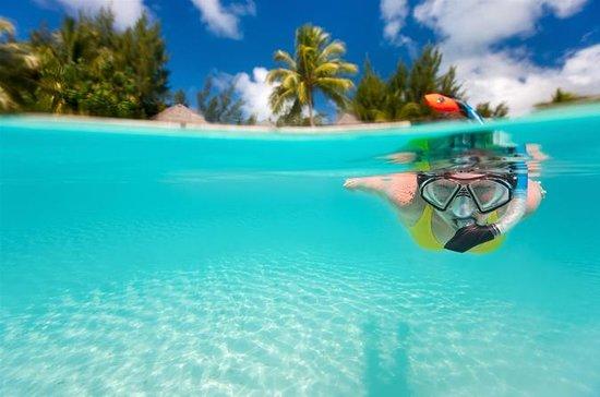 Amigom Tours Cancun