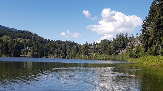 Nita Lake Lodge, Whistler: Lake