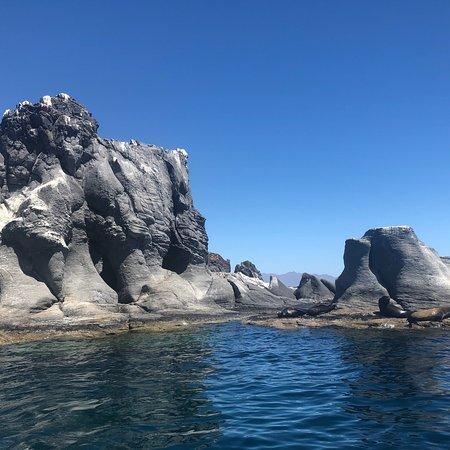 Foto de Loreto Guide with Said Orozco