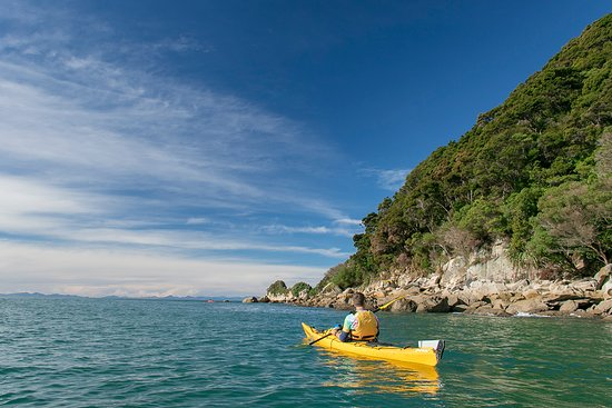Kaiteriteri, Yeni Zelanda: looking for seals at adele island