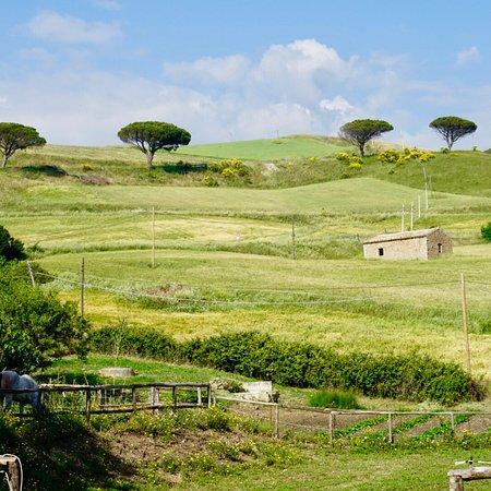 Castellana Sicula, Italia: photo2.jpg