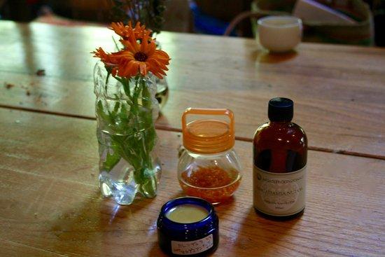 Dana Village: Medial herb WS メディカルハーブのワークショップ