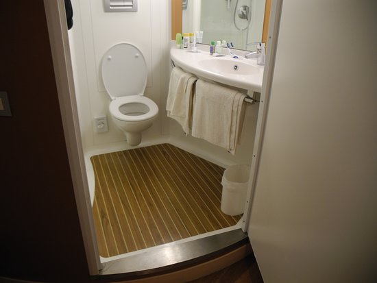 Ibis London Blackfriars Hotel : The floor of the bathroom is higher than the room floor.