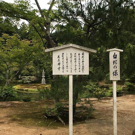 วัดคินคาคุจิ ภาพถ่าย