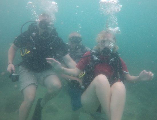 Real Divers: The Hartman family
