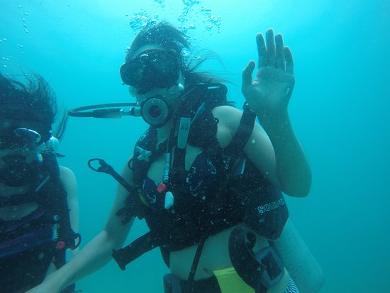 Real Divers: New divers