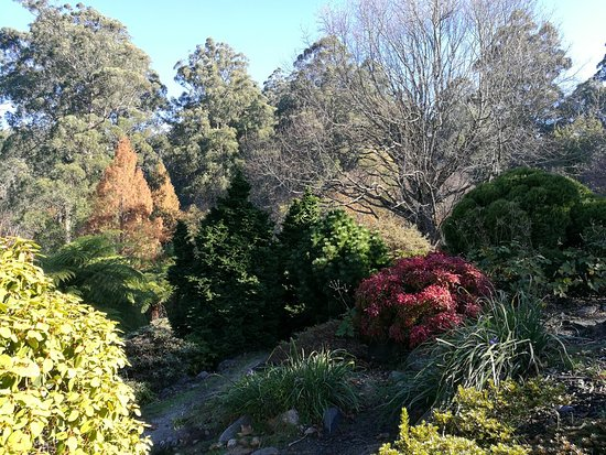 National Rhododendron Gardens: IMG_20180526_131925_large.jpg